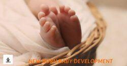 beautiful new born baby